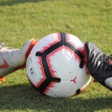 Ciri Utama Yang Dimiliki Agen Bola Resmi
